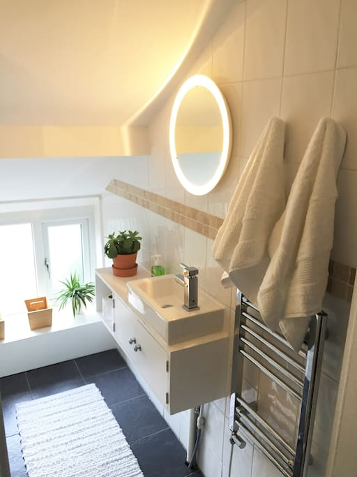 Light and airy shower room with lavatory and sink