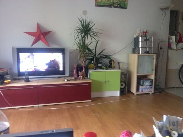 Schönes Zimmer in Nähe Basel - Kaiseraugst - Apartment