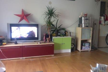 Schönes Zimmer in Nähe Basel - Kaiseraugst - Apartamento