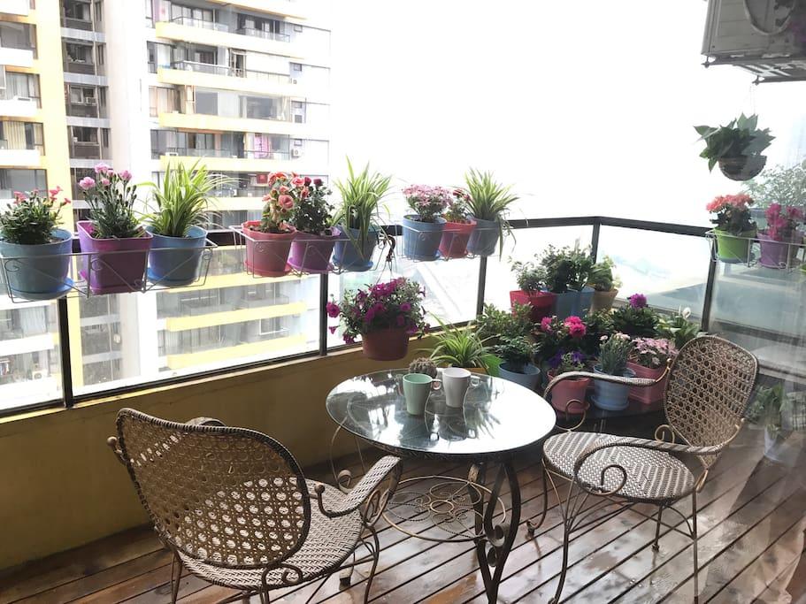 美美的阳台小花园,坐在这里,花香扑鼻,眺望渝中半岛。