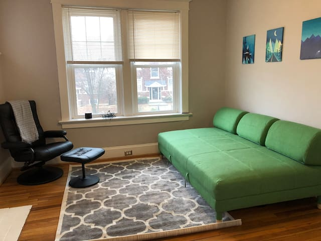 WASH U / DELMAR LOOP 2 BR - Close To Forest Park 🌺