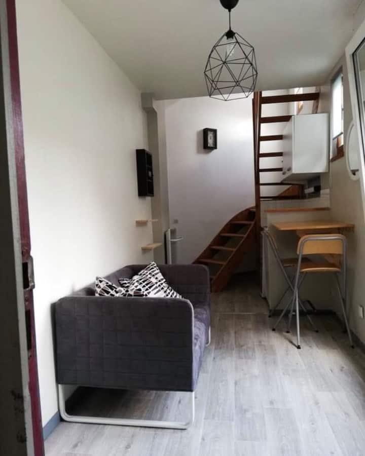 Duplex de 18 m2 secteur Cormontaigne Vauban
