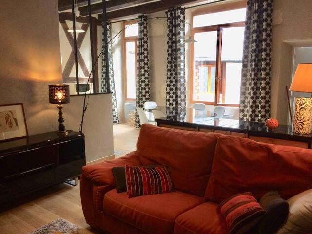 Bourges - Hypercentre - Spacieux appartement -53m2