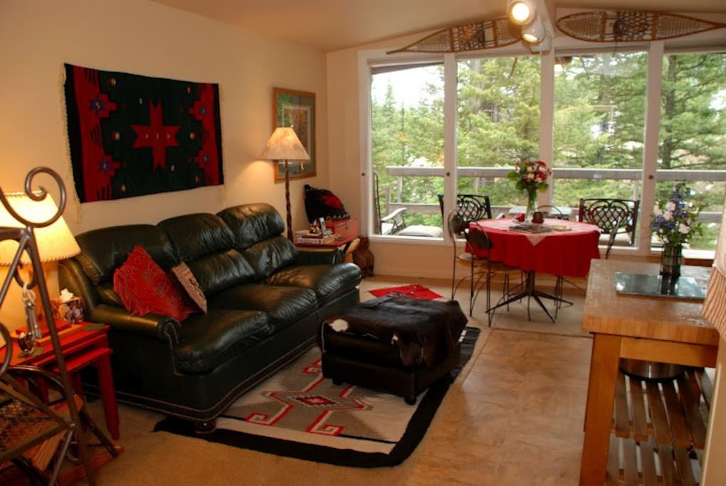 This open space of living room- kitchen and wood stove for heat! The queen sofa bed makes this accommodate four guests.