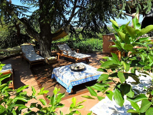 Country house, Scarlino in Tuscany - Scarlino - 一軒家