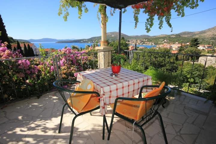 Two bedroom apartment with terrace and sea view Slano, Dubrovnik (A-8540-a)