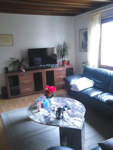 Wohnung 4,5 Zimmer möbliert  - Turgi - Apartemen