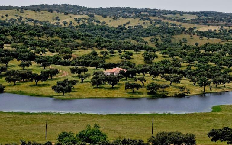 Herdade da Negrita-Casa da Barragem - Beja - Villa