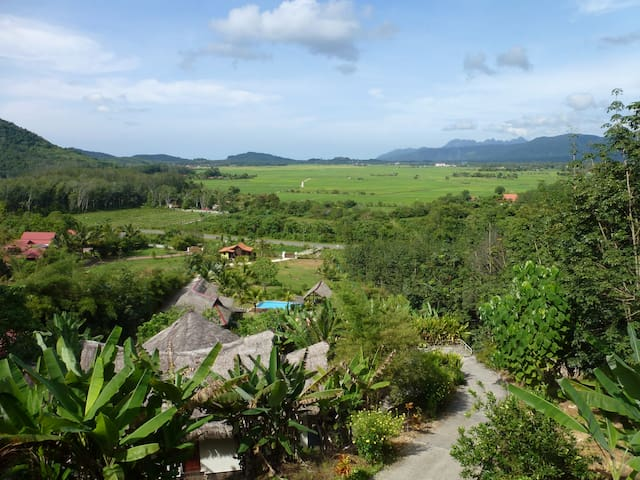 View over the valley and paddy fields with mountains in the horizon