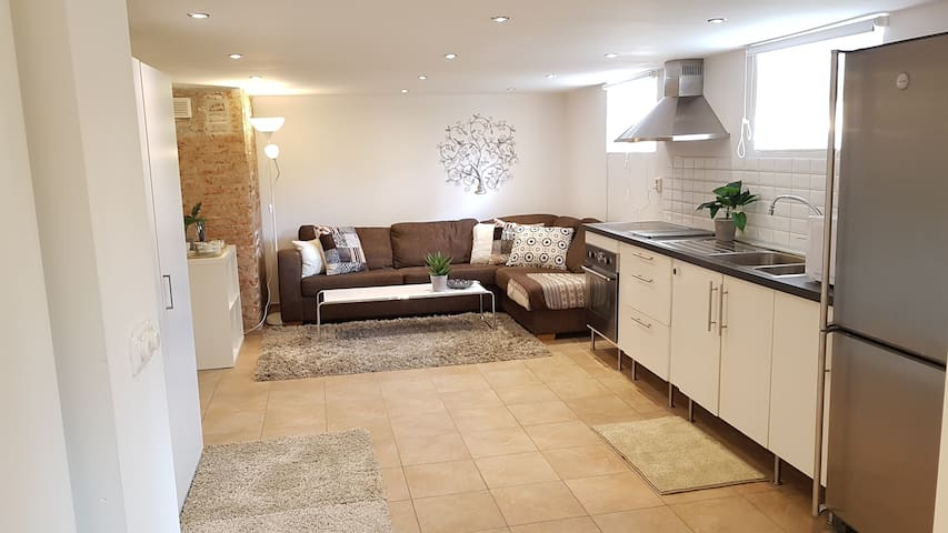 Modern bright basement appartment