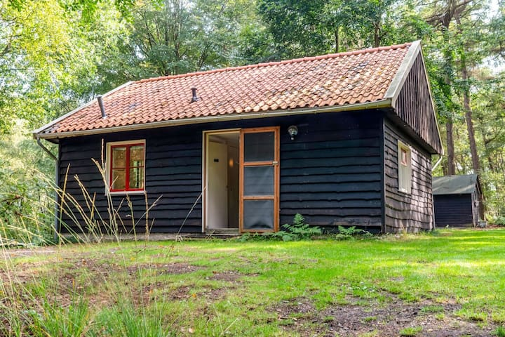 Lovely Holiday Home in Rheezerveen, in the woods of estate