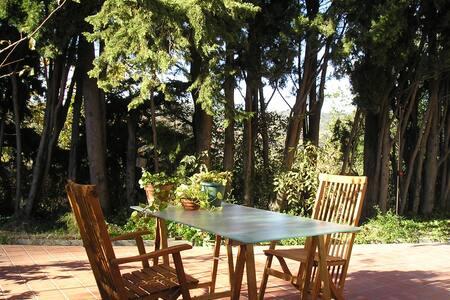 Una habitación... con jardín!