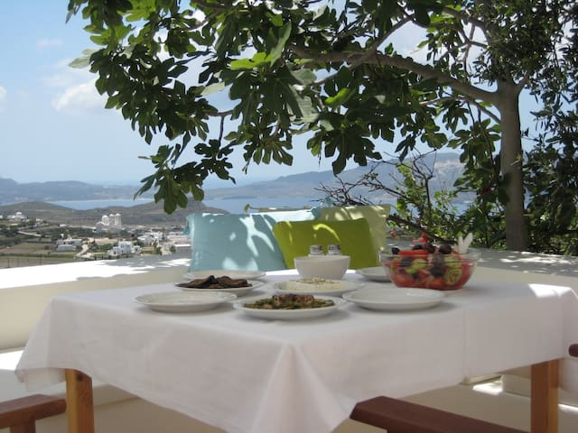 AMAZING VIEW - Villa in Plaka - Plaka - House