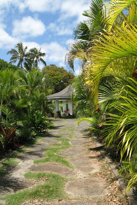 Tropical driveway leading to unit
