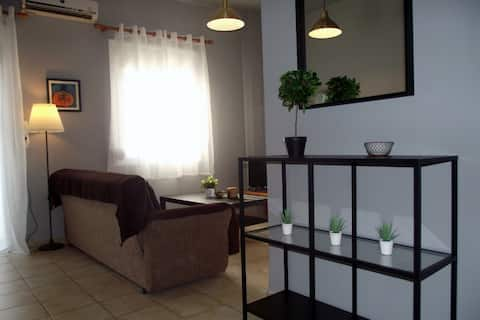 City center modern single floor apartment