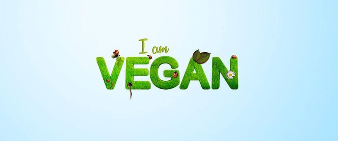 Nosso Cantinho Vegan!