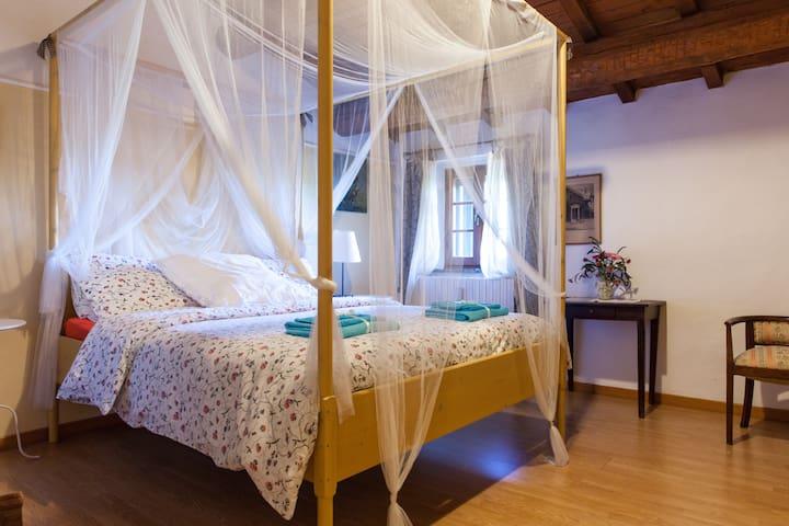 Due ampie camere Shanti B&B - Rimini - Bed & Breakfast