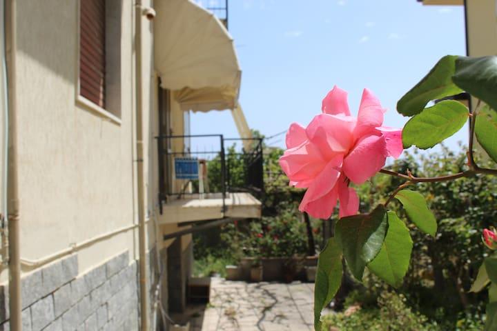 Residenza Maria - Maestrale