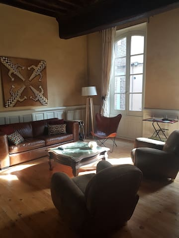 Bel appartement en centre ville d'ALBI