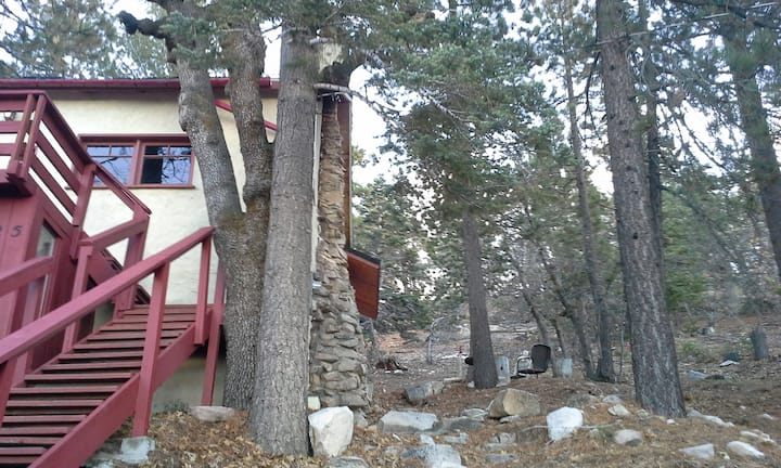 Eco-Art Mountaineer Cabin -Backs up to the forest