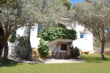 Casa los OLivos - El Tosalet - House