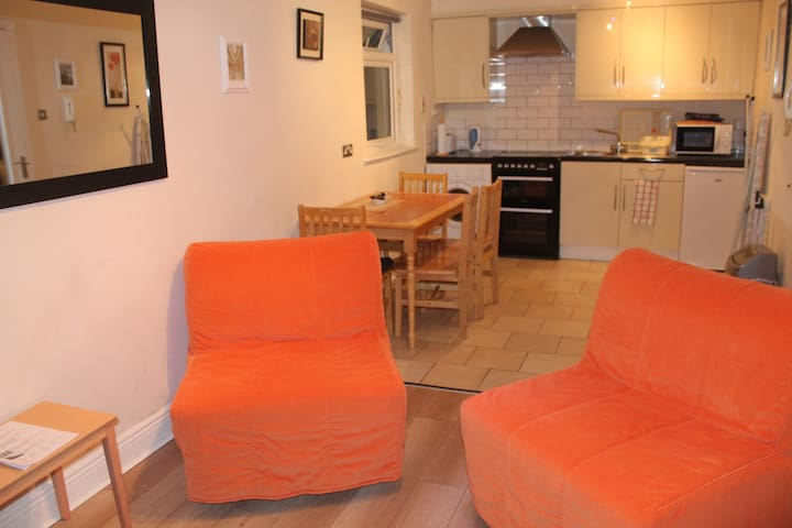 Warm, Spacious Apartment. Sleeps 6. - Dublin - Huoneisto