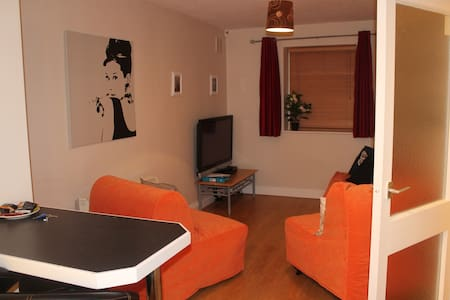 Warm, Cozy 1 Bed Apartment. - Dublin