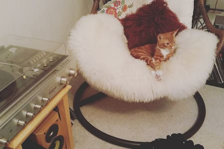2 x Double Bed Bedroom //Welcome to Cosy Corner♫♡ - Glasgow - Apartment