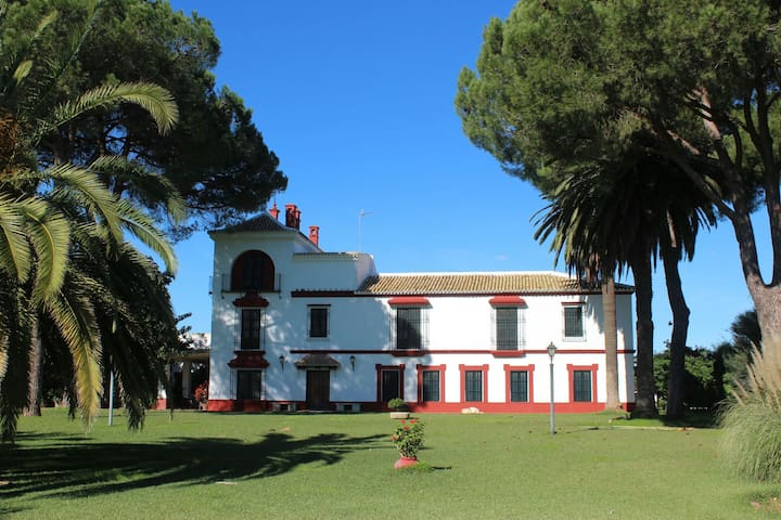 Hacienda(Cortijo) with pool in Doñana N. Park. - Villamanrique de la Condesa - Dům