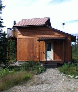 Denali Aspen Cabin 1