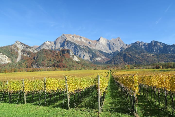 Fläsch, Modernes Gästezimmer im Weinbaugebiet