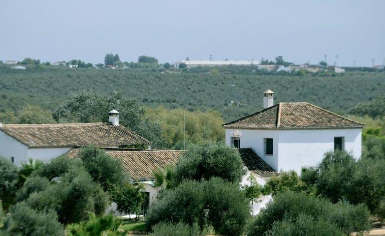 El Cotillo de San José - Hinojos - Casa
