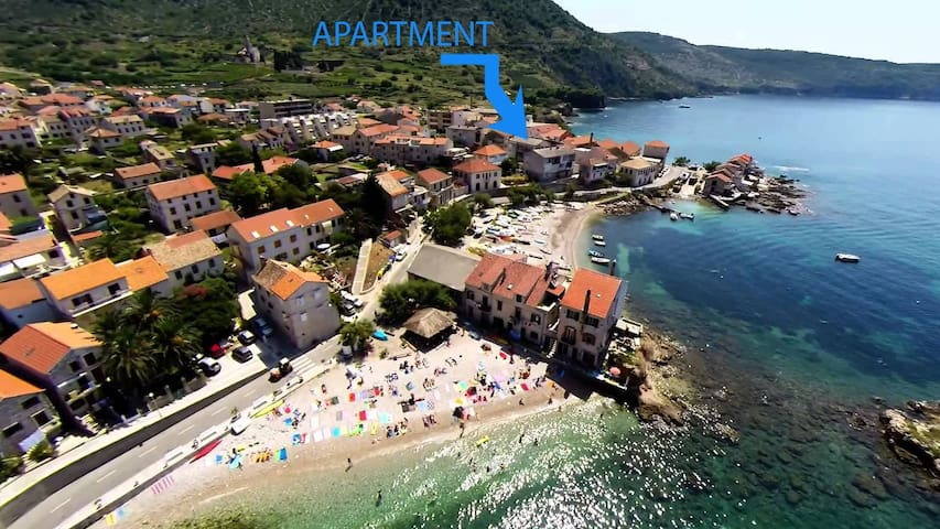 Apartman with Sea view