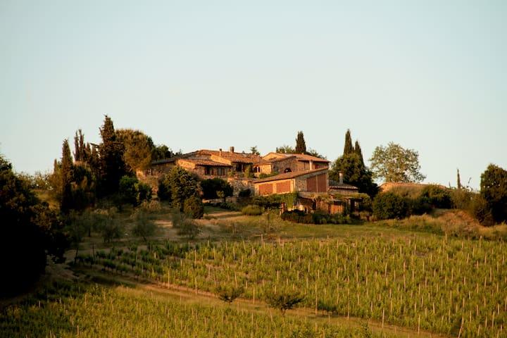 Organic Winery in Chianti - Castellina In Chianti - บ้าน