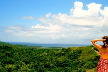 Wildlife Refuge and Ocean Views - Vieques - Haus