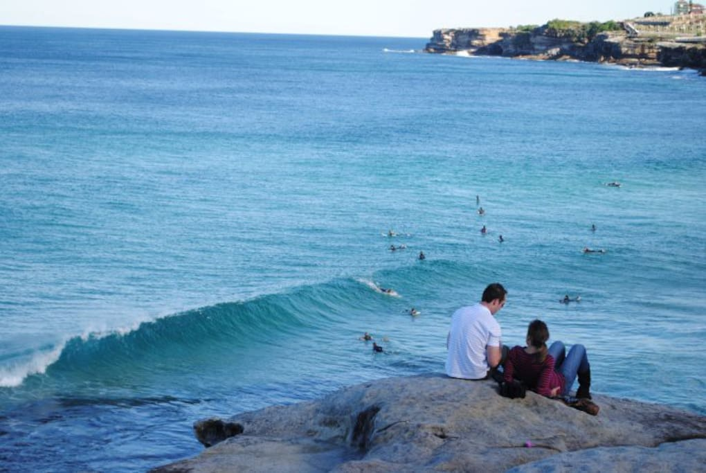 The Bondi to Coogee Coastal Walk will offer these views..