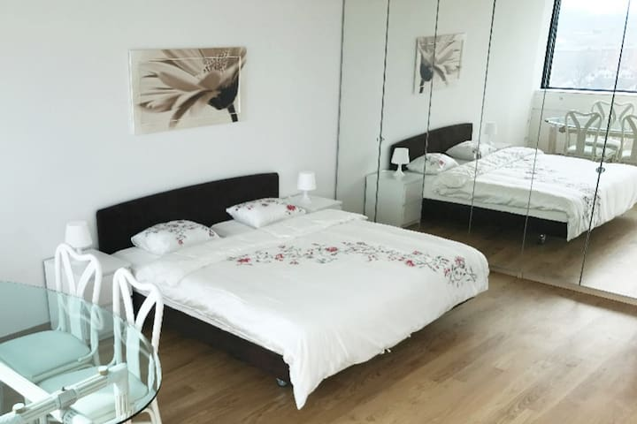 BIG  room  15 min. from HB main station