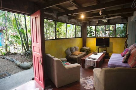 Twin Room with Shared Bathroom Casa Jungla Hostel - Jaco