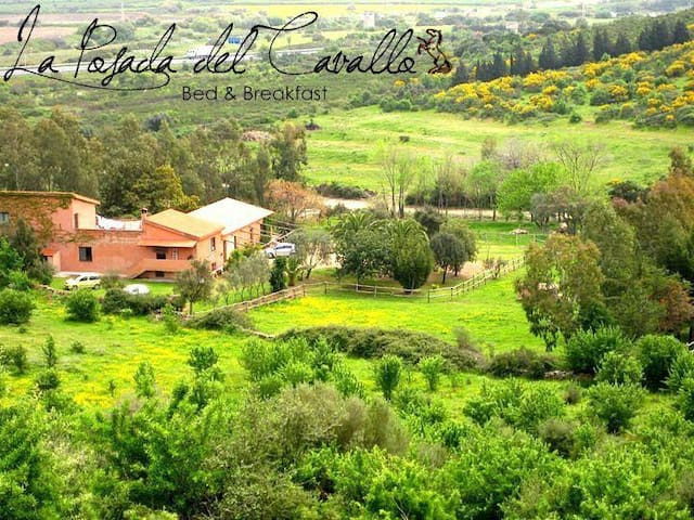 La Posada del Cavallo  B&B / red - Posada - Bed & Breakfast
