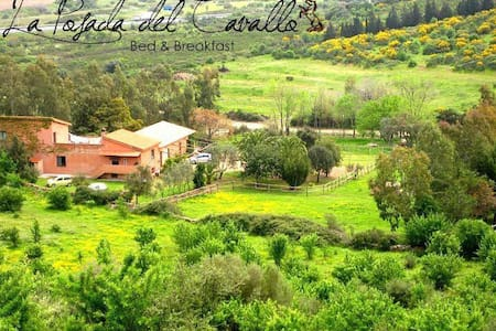 La Posada del Cavallo ♞ B&B / red - Bed & Breakfast