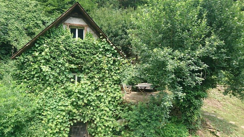 Waldhäuschen im Grünen
