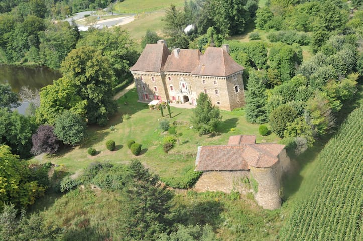 Chateau de Frugie-Bed and breakfast - Saint-Pierre-de-Frugie - Slott