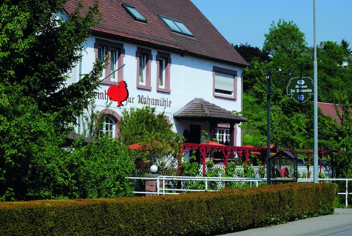 Appartement in der 'Hahnmühle'  - Bensheim - Apartament