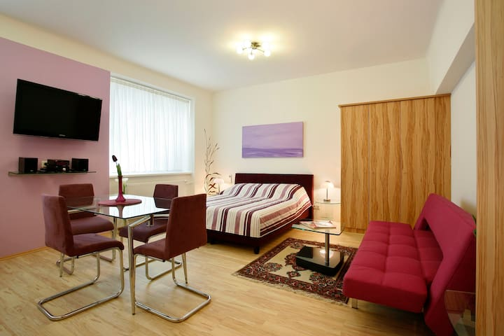 Studioapartment in Vienna's prime location