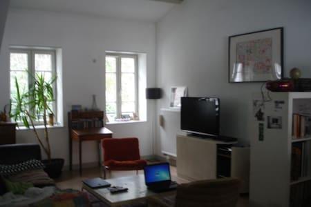 Chambre dans bel appartement - Saint-Étienne