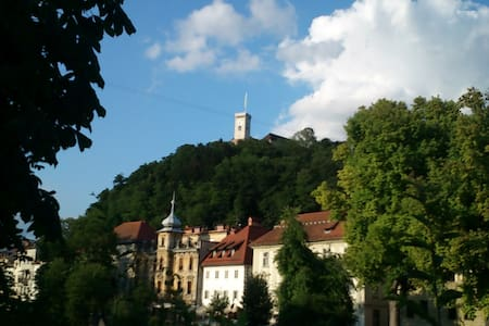 Pedestrian zone in heart of old town! Location could not be better! Julija and Filip Apartments are in the same house located just below Ljubljana Castle in the pedestrian zone and offer an excellent vantage point WE OFFER TRANSPORT FROM/TO AIRPORT