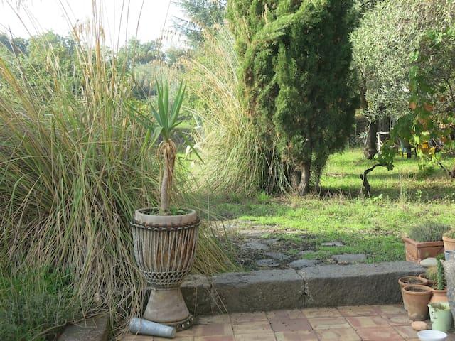 Antico Palmento- immerso nel verde - Piedimonte etneo - Hus