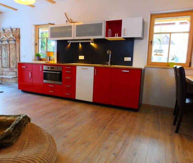 Moderne Küche mit Geschirrspüler, Induktionsherd, Backofen, Mikrowelle, etc.