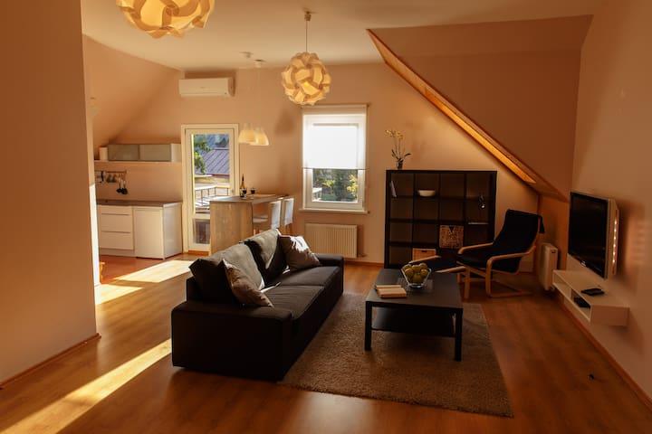 Vecbulduri Apartment Jurmala - Jūrmala - Departamento