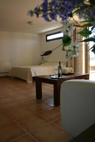 charming apartment in the country  - Santa Maria del Camí